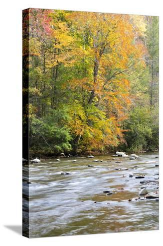 Tennessee, Great Smoky Mountains National Park, Little River-Jamie & Judy Wild-Stretched Canvas Print