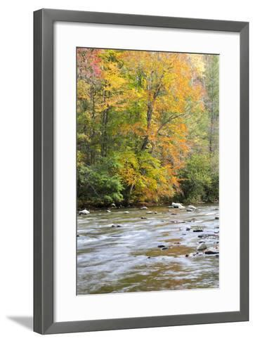 Tennessee, Great Smoky Mountains National Park, Little River-Jamie & Judy Wild-Framed Art Print