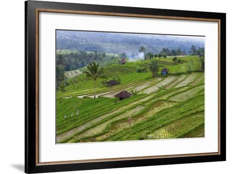 Water-Filled Rice Terraces, Bali Island, Indonesia-Keren Su-Framed Art Print