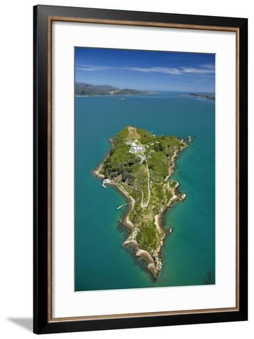Matiu, Somes Island, Wellington Harbour, Wellington, New Zealand-David Wall-Framed Art Print