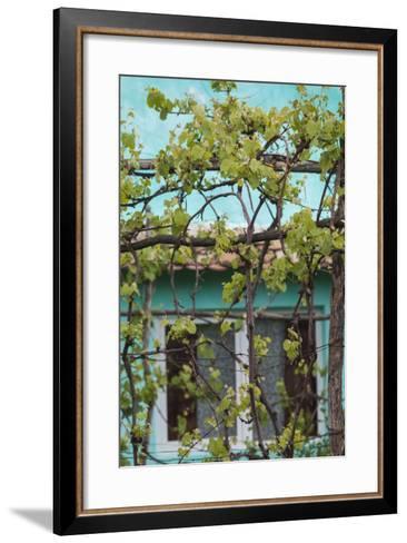 Romania, Transylvania, Cadaciu Mare, Traditional Romanian Village-Walter Bibikow-Framed Art Print