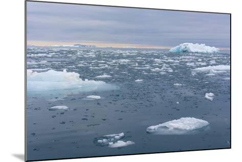 Norway. Nordaustlandet Island. Brasvelbreen. Brash Ice in the Water-Inger Hogstrom-Mounted Photographic Print