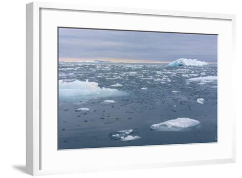 Norway. Nordaustlandet Island. Brasvelbreen. Brash Ice in the Water-Inger Hogstrom-Framed Art Print