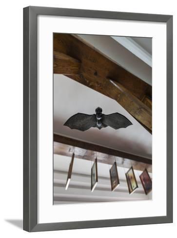Romania, Transylvania, Tihuta Pass, Hotel Castel Dracula, Bat Art-Walter Bibikow-Framed Art Print