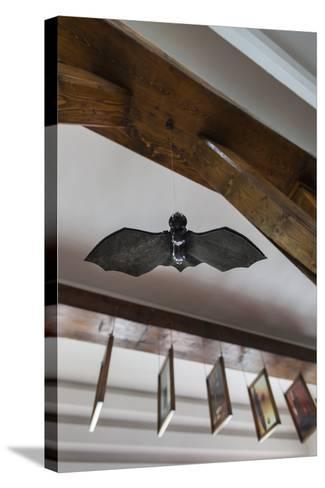 Romania, Transylvania, Tihuta Pass, Hotel Castel Dracula, Bat Art-Walter Bibikow-Stretched Canvas Print