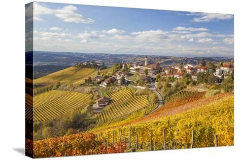 Vineyards, Treiso, Alba, Langhe, Piedmont, Italy-Peter Adams-Stretched Canvas Print