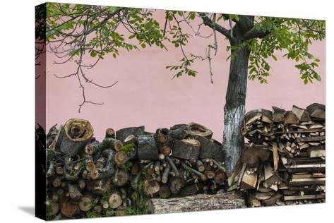 Romania, Transylvania, Sibiel, Firewood-Walter Bibikow-Stretched Canvas Print