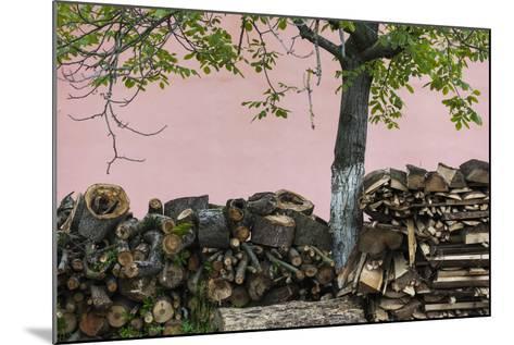 Romania, Transylvania, Sibiel, Firewood-Walter Bibikow-Mounted Photographic Print