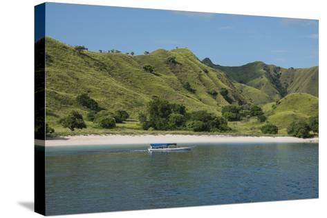 Indonesia, Komodo Island. Komodo NP. Pink Beach Cove, Savu Sea-Cindy Miller Hopkins-Stretched Canvas Print