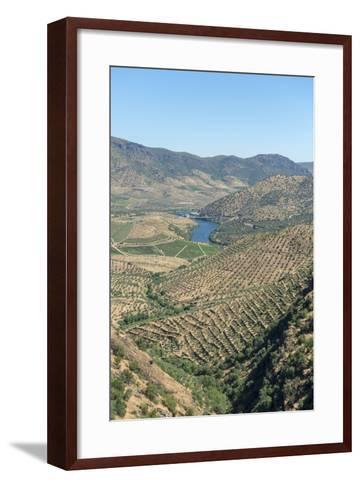 Portugal, Figueira de Castelo Rodrigo, View of Douro River Valley-Jim Engelbrecht-Framed Art Print