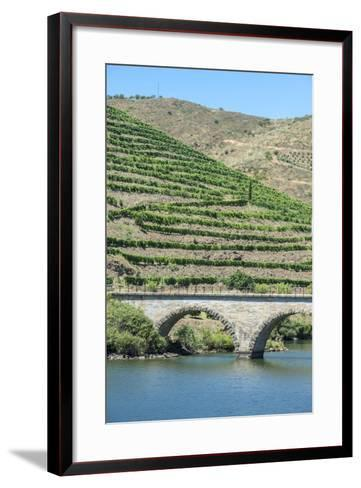 Portugal, Peredos Dos, Bridge and Vineyards Along Douro River-Jim Engelbrecht-Framed Art Print