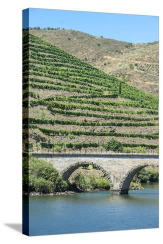 Portugal, Peredos Dos, Bridge and Vineyards Along Douro River-Jim Engelbrecht-Stretched Canvas Print