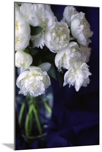 White Peonies in a Vase-Anna Miller-Mounted Photographic Print