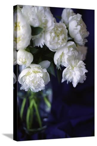 White Peonies in a Vase-Anna Miller-Stretched Canvas Print