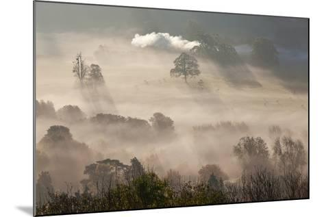 Misty Autumn Morning, Uley, Gloucestershire, England, UK-Peter Adams-Mounted Photographic Print