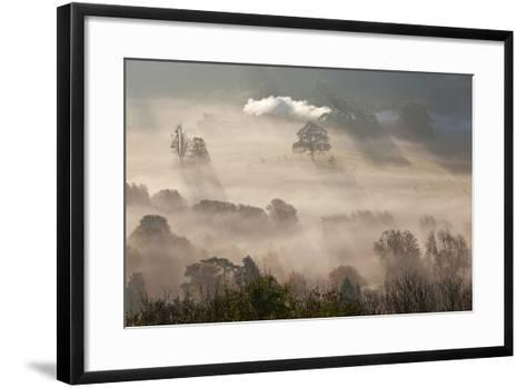Misty Autumn Morning, Uley, Gloucestershire, England, UK-Peter Adams-Framed Art Print