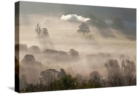 Misty Autumn Morning, Uley, Gloucestershire, England, UK-Peter Adams-Stretched Canvas Print