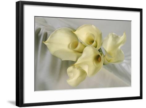 Calla Lily-Anna Miller-Framed Art Print