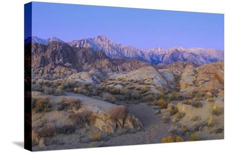 California, Alabama Hills. Sunrise on Lone Pine Peak and Mt Whitney-Don Paulson-Stretched Canvas Print