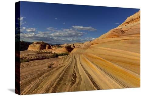 The Second Wave in the Vermillion Cliffs Wilderness, Arizona, USA-Chuck Haney-Stretched Canvas Print