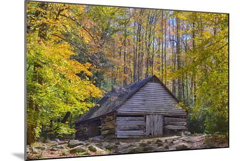 Tennessee, Great Smoky Mountains NP, Noah 'Bud' Ogle Farm-Jamie & Judy Wild-Mounted Photographic Print