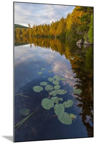 Water Lilies and Cloud Reflection on Lang Pond, Northern Forest, Maine-Jerry & Marcy Monkman-Mounted Photographic Print