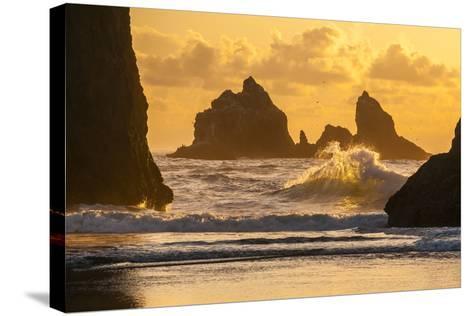 USA, Oregon, Bandon. Shore Scenic-Cathy & Gordon Illg-Stretched Canvas Print