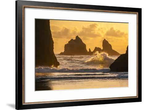USA, Oregon, Bandon. Shore Scenic-Cathy & Gordon Illg-Framed Art Print
