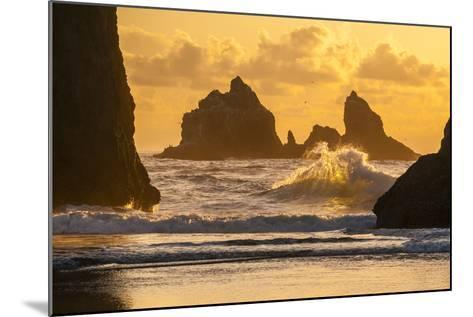 USA, Oregon, Bandon. Shore Scenic-Cathy & Gordon Illg-Mounted Photographic Print