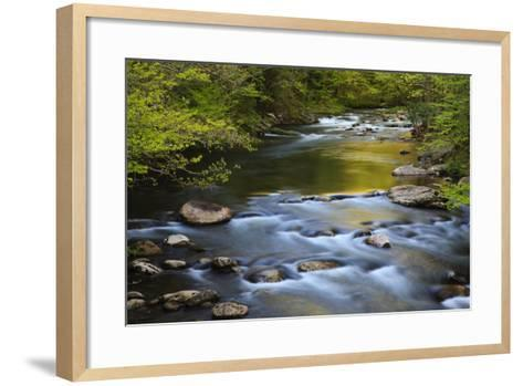 Tennessee, Spring Reflections on Little River at Smoky Mountains NP-Joanne Wells-Framed Art Print