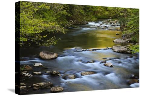 Tennessee, Spring Reflections on Little River at Smoky Mountains NP-Joanne Wells-Stretched Canvas Print
