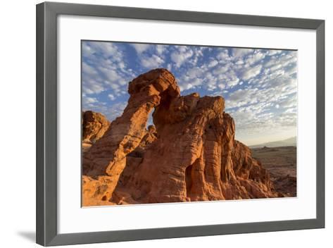 USA, Nevada, Clark County. Valley of Fire State Park. Elephant Rock-Brent Bergherm-Framed Art Print