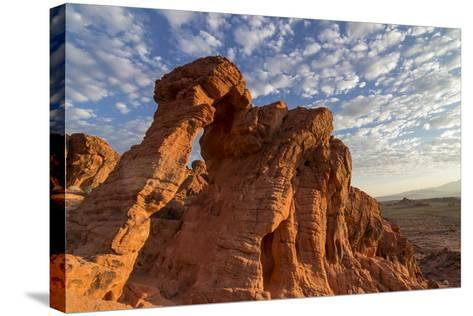 USA, Nevada, Clark County. Valley of Fire State Park. Elephant Rock-Brent Bergherm-Stretched Canvas Print