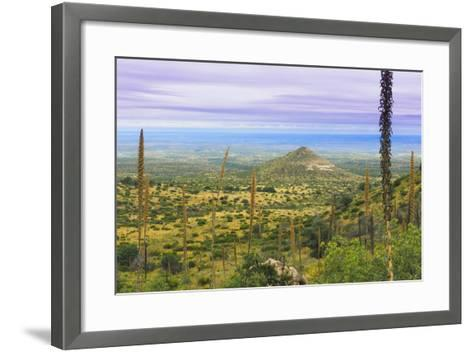 USA, Texas, Guadalupe Mountains NP. Landscape with Small Mountain-Don Paulson-Framed Art Print