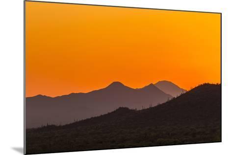 USA, Arizona, Saguaro National Park. Tucson Mountains at Sunset-Cathy & Gordon Illg-Mounted Photographic Print