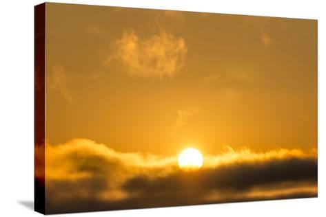 Sunrise, Sonoma, California-Rob Sheppard-Stretched Canvas Print