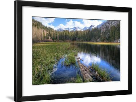 USA, California, Sierra Nevada Range. Landscape with Weir Pond-Dennis Flaherty-Framed Art Print