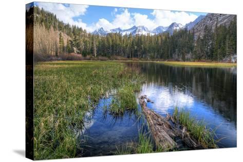 USA, California, Sierra Nevada Range. Landscape with Weir Pond-Dennis Flaherty-Stretched Canvas Print