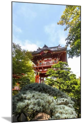 Japanese Tea Garden, Golden Gate Park, San Francisco, California-Susan Pease-Mounted Photographic Print