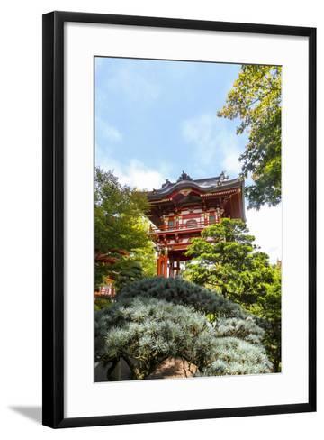 Japanese Tea Garden, Golden Gate Park, San Francisco, California-Susan Pease-Framed Art Print