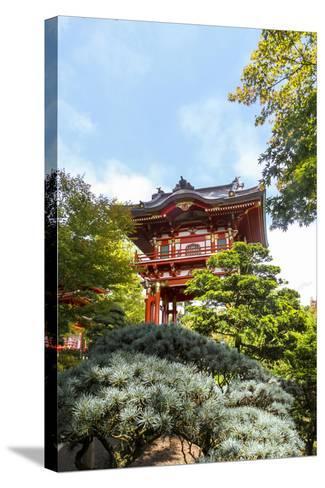 Japanese Tea Garden, Golden Gate Park, San Francisco, California-Susan Pease-Stretched Canvas Print