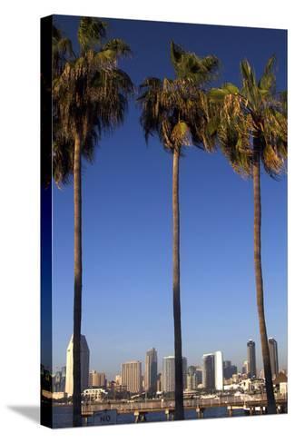 USA, California, San Diego. San Diego Skyline and Palm Trees-Kymri Wilt-Stretched Canvas Print