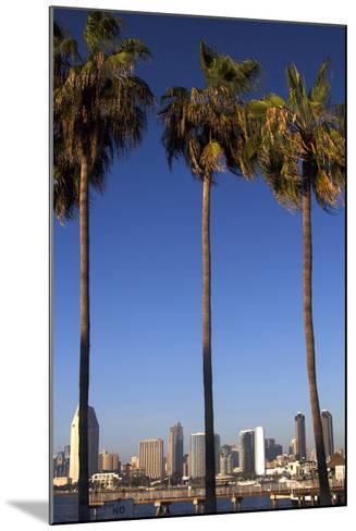 USA, California, San Diego. San Diego Skyline and Palm Trees-Kymri Wilt-Mounted Photographic Print