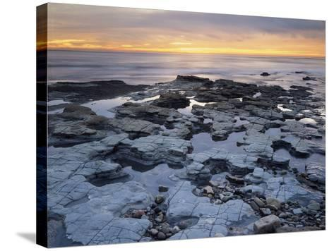 California, San Diego, Sunset over Tide Pools on the Pacific Ocean-Christopher Talbot Frank-Stretched Canvas Print