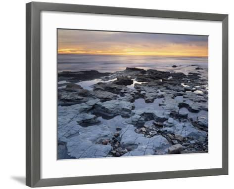 California, San Diego, Sunset over Tide Pools on the Pacific Ocean-Christopher Talbot Frank-Framed Art Print