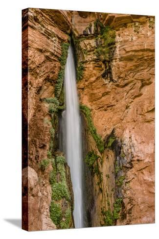 Waterfall. Tributary to Colorado River. Grand Canyon. Arizona. USA-Tom Norring-Stretched Canvas Print