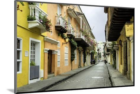 Architecture in the San Diego Section, Cartagena, Colombia-Jerry Ginsberg-Mounted Photographic Print