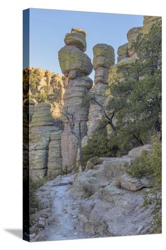 USA, Arizona, Chiricahua National Monument. Eroded Rock Formations-Don Paulson-Stretched Canvas Print