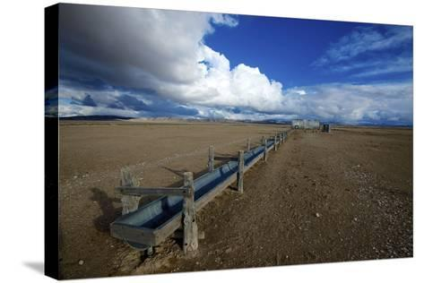 Barrel Spring, Ely, Nevada. a Remote Spring in the Nevada Desert-Richard Wright-Stretched Canvas Print