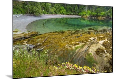 Washington State, San Juan Islands. Secluded Bay on Sucia Island-Don Paulson-Mounted Photographic Print